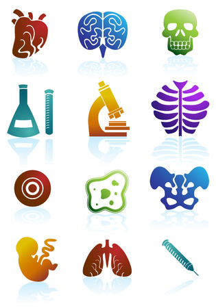 Biology Color Icon Set : Medical themed buttons. Vector