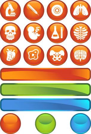生物学のオレンジ色のアイコンを設定
