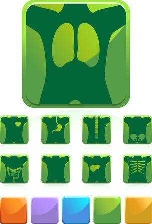 X-Ray Icon Button Set