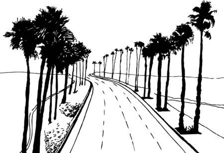 Palm Tree Street Vector