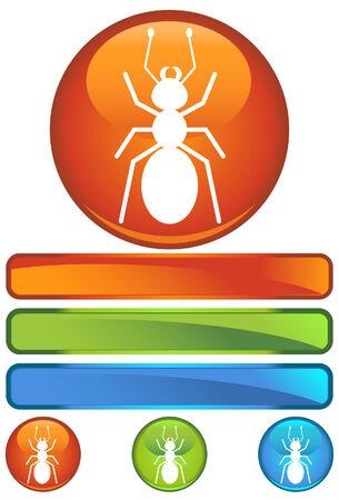 ant orange round