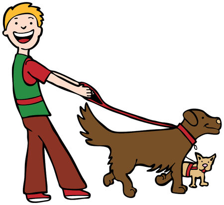 dog walking: Dog Walker : Man walking two dogs.
