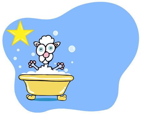 Poodle Bath Stock Vector - 5382184