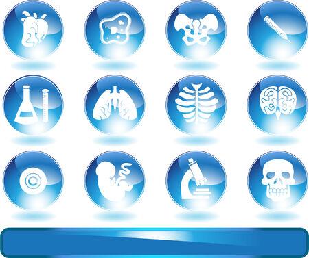 アイコン セット ラウンド シャイニー生物学: 医療テーマのボタン。