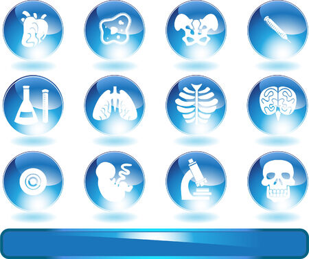 Biology Shiny Round Icon Set : Medical themed buttons. Vector