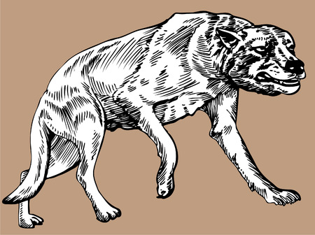 DIre Wolf  Stock Illustratie