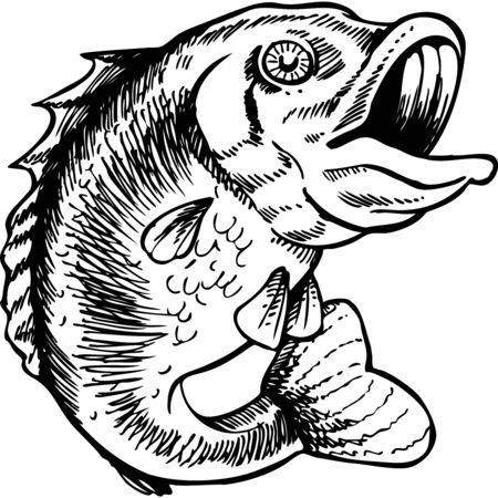 big mouth bass art Vettoriali