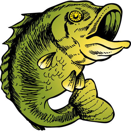 big mouth bass Vettoriali