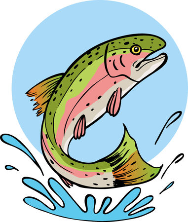 creek: rainbow trout