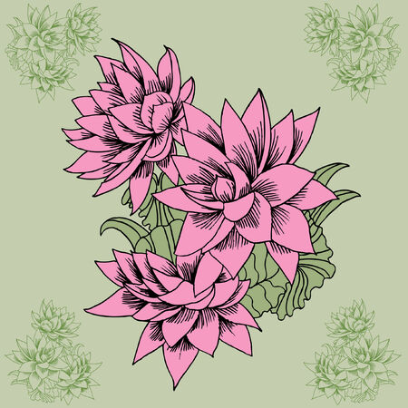 Pink Lotus isolated on a green background. Vector