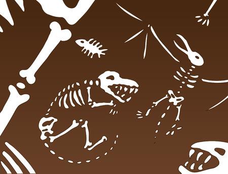 fossil: Fondo f�sil de dinosaurio viejo sigue siendo bajo el suelo. Vectores
