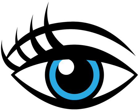 Human female eye isolated on a white background. Vector