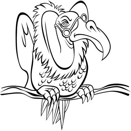 buzzard: Old Buzzard
