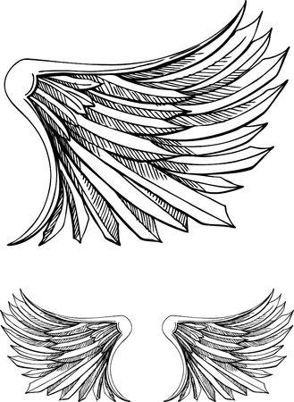 Vogel-Wing Standard-Bild - 7051848