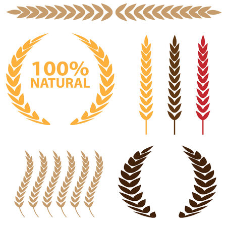 wheat illustration: Frumento icon set