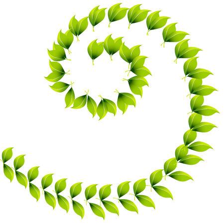 curving: Spiral Leaf Design Illustration
