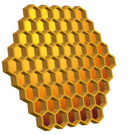 Honeycomb Hive Illustration