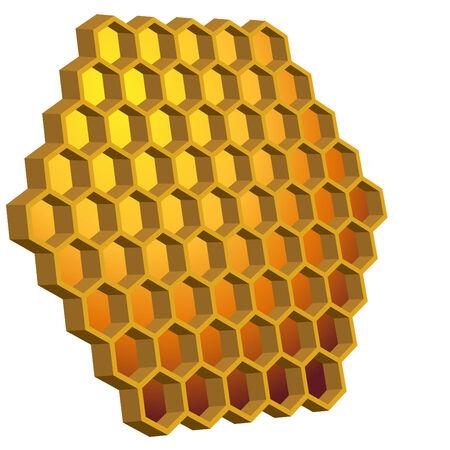comb: Honeycomb Hive Illustration