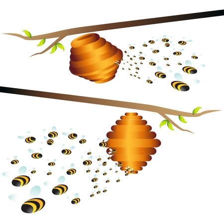 Beehive Branch Stock Vector - 7395042