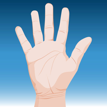 raise the thumb: An image of a realistic hand. Illustration