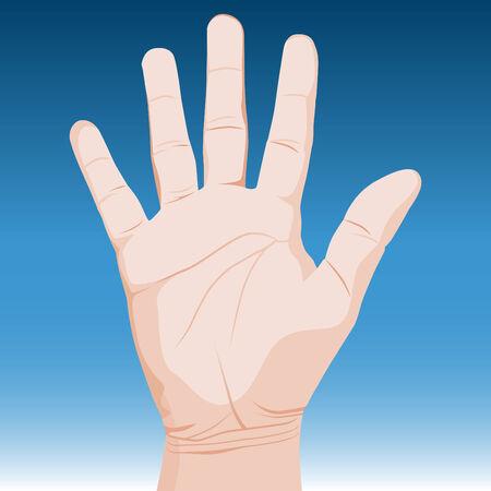 kale: Een afbeelding van een realistische hand. Stock Illustratie