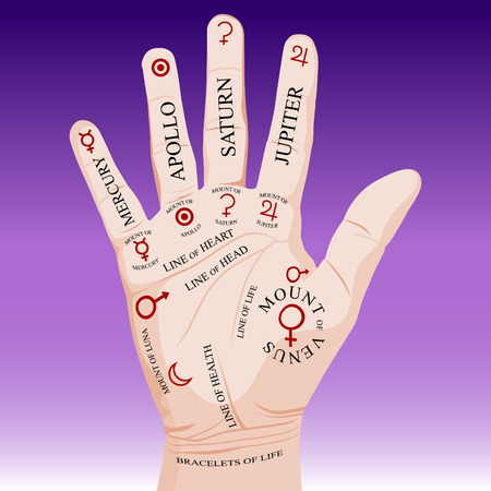 readers: An image of a palm reading palmistry. Illustration