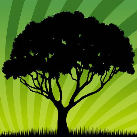 Een afbeelding van een zons opgang  zons ondergang boom. Stock Illustratie