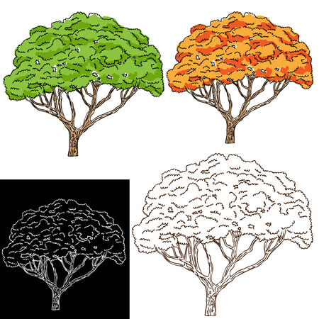 An image of a tree set. Stock Vector - 7614223
