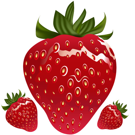 An image of a realistic strawberry. Ilustracja