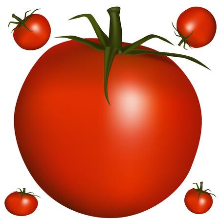 Een afbeelding van een realistische tomaat.