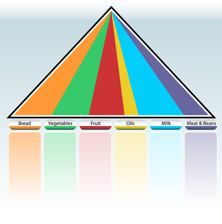 An image of a food pyramid table. Vector