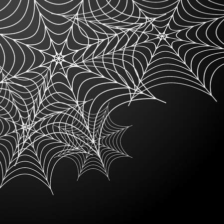 An image of a cobweb background. Vector