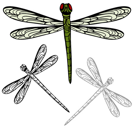 An image of a realistic dragonfly.