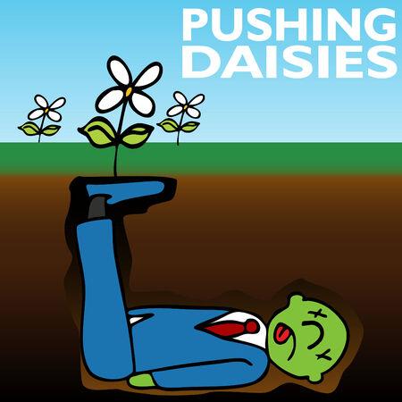 An image representing pushing up daisies.