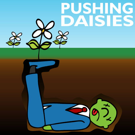 corpse flower: An image representing pushing up daisies.
