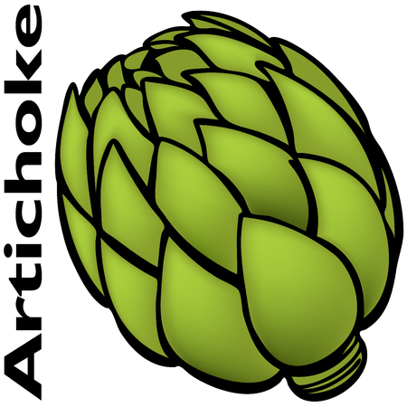 An image of a artichoke.
