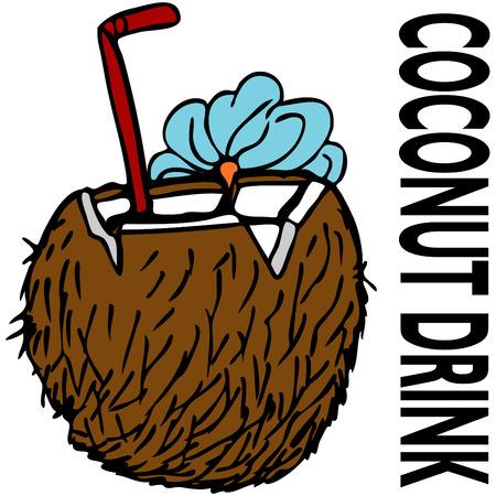 ココナッツの飲み物のイメージ。  イラスト・ベクター素材