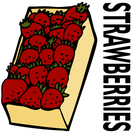An image of a box strawberries. Stock Vector - 8130358