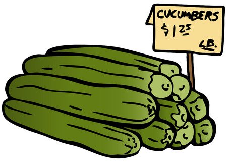 cucumbers: An image of cucumbers. Illustration