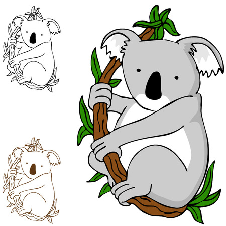 An image of a koala cartoon drawing. Stock Vector - 8434619