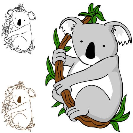 An image of a koala cartoon drawing. Vector