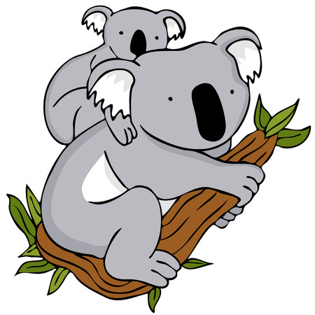 An image of a koala baby and mom cartoon drawing. Vector