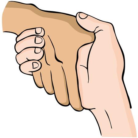 mani cartoon: L'immagine di una stretta di mano. Vettoriali
