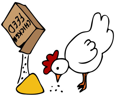 An image of a hen eating from a box of chicken feed.