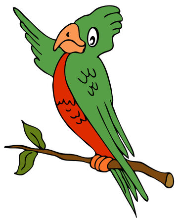 An image of a pointing parrot.