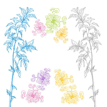 An image of hand drawn plant design elements. Stock Vector - 9036793