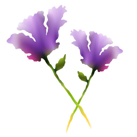 An image of a two purple flowers in a watercolor style.