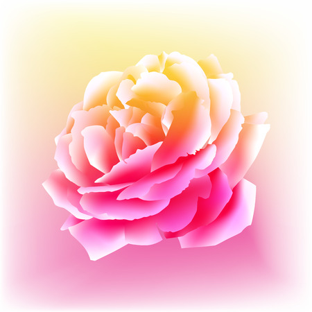 An image of a rose bloom in a watercolor paint style. Vector