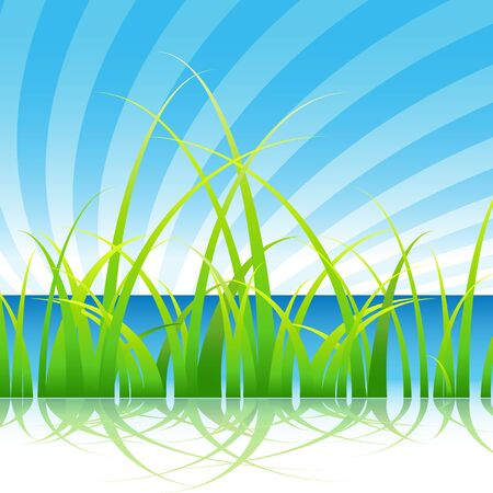 grass blades: An image of a set of blades of grass on blue water sky background.
