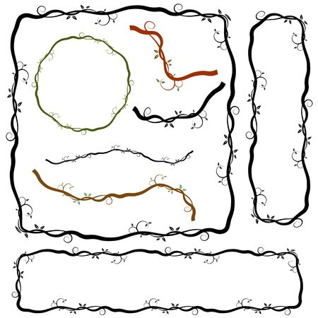 vine  plant: An image of a swirl vine plant border branches.